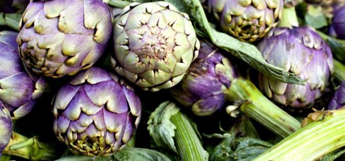 Benefícios da Alcachofra para a Saúde