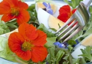 flores_comestiveis_salada