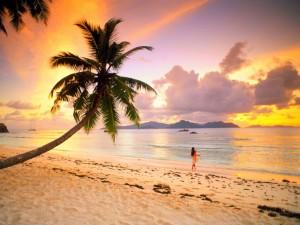 praia_por_do_sol
