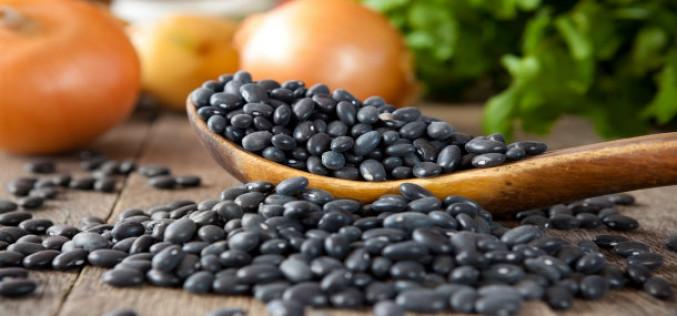 Benefícios do feijão preto – Top 4