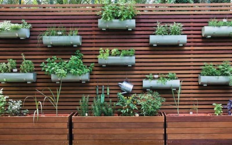 Horta em casa – aprenda a fazer a sua