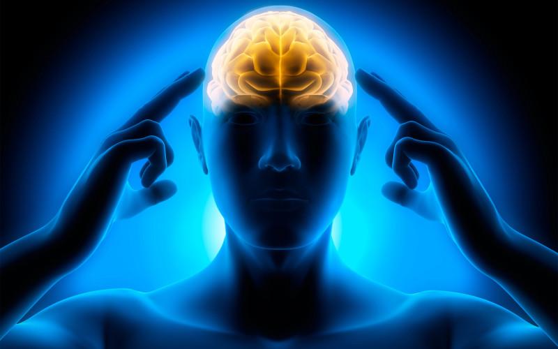 Suplementos Para A Função Cerebral