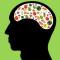 Comer Gordura Pode Ser Bom Para O Cérebro