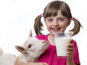 leite_de_cabra