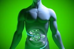 Alimentos A Evitar Para Manter O Bem-Estar Intestinal