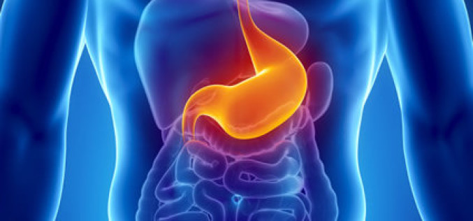 Saiba mais sobre a endoscopia: para que serve e como é feito o exame