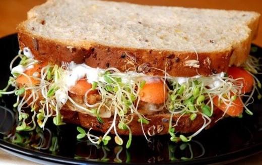 Receitas deliciosas de sanduíche para cada estação do ano